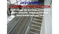 Hydrofuge de Surface Incololore à Effet Mouillé, Imperméabilise Matériaux Poreux - WATERLOCK